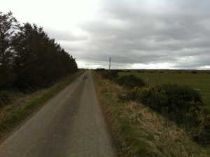 Straight road across mores